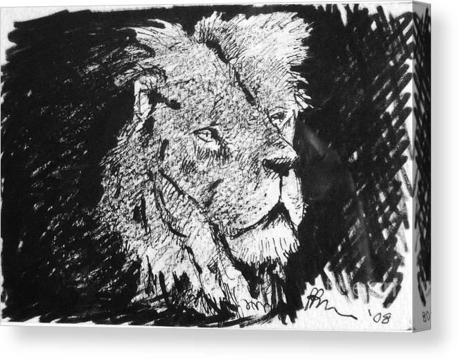 Male Lion Portrait Canvas Print featuring the drawing Male Lion Portrait by Paul Miller