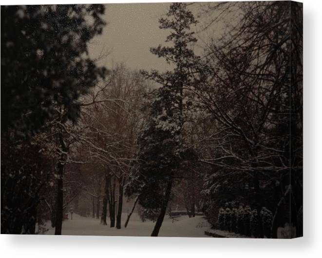 Lights Canvas Print featuring the photograph Peaceful Snow Dusk by Rob Hans