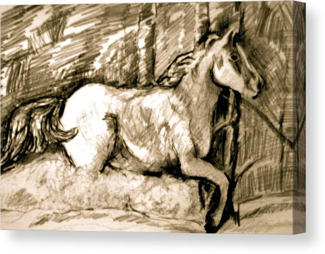 Horse Canvas Print featuring the drawing Snow Drift Delight by Dan Earle