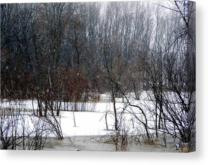 Nature Canvas Print featuring the photograph Snowy River by Cindy Yeakel