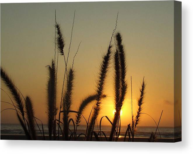 Sunset Canvas Print featuring the photograph Sunset At Cannon Beach by Everett Bowers