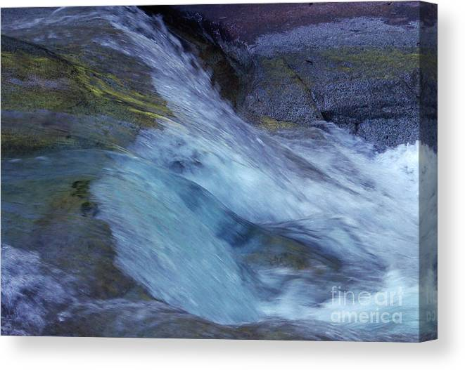 Nature Canvas Print featuring the photograph Tropical Flowing Waters by Kerryn Madsen- Pietsch