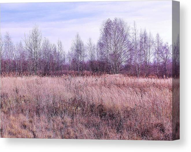 Landscape Canvas Print featuring the photograph Waiting For Winter by Slawek Aniol