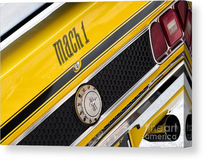 1970 Canvas Print featuring the photograph Yellow N Black by Tim Gainey