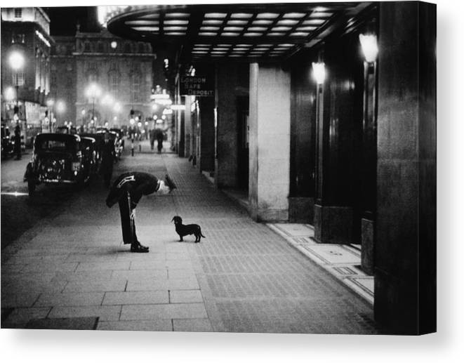Piccadilly Circus Canvas Print featuring the photograph Commissionaires Dog by Kurt Hutton