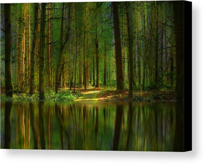 Canvas Print featuring the photograph 3619 by Peter Holme III