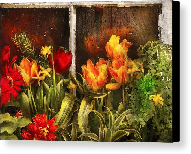 Savad Canvas Print featuring the photograph Flower - Tulip - Tulips In A Window by Mike Savad