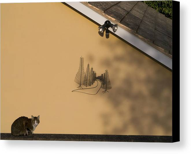 Security Light Canvas Print featuring the photograph Pete's Wall by Jerry Daniel