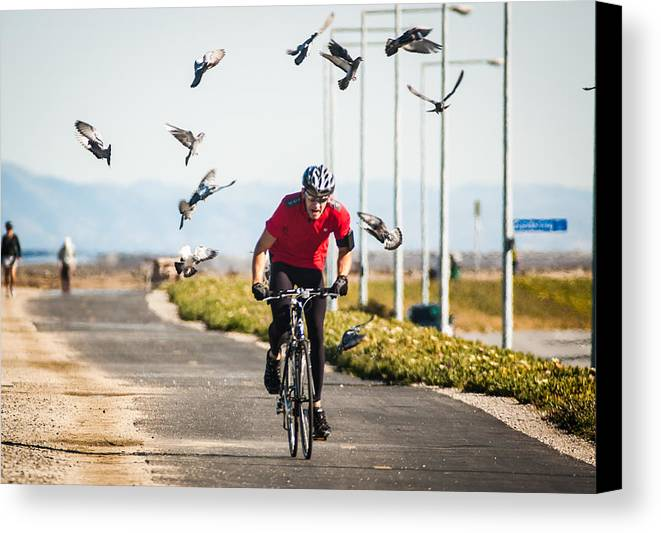 Bike Canvas Print featuring the photograph Scattering The Pigeons by Alex Lapidus