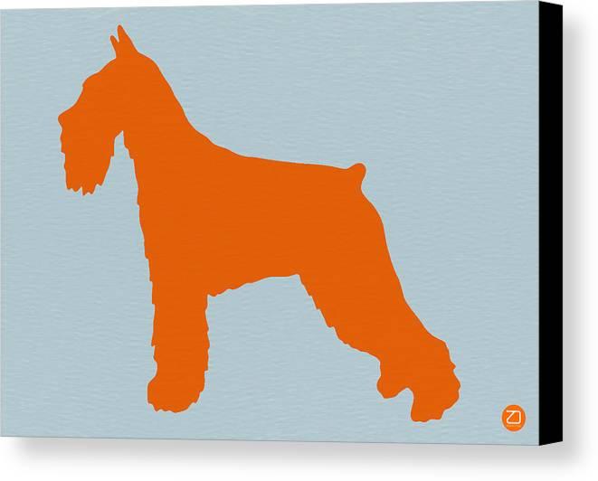 Standard Schnauzer Canvas Print featuring the photograph Standard Schnauzer Orange by Naxart Studio