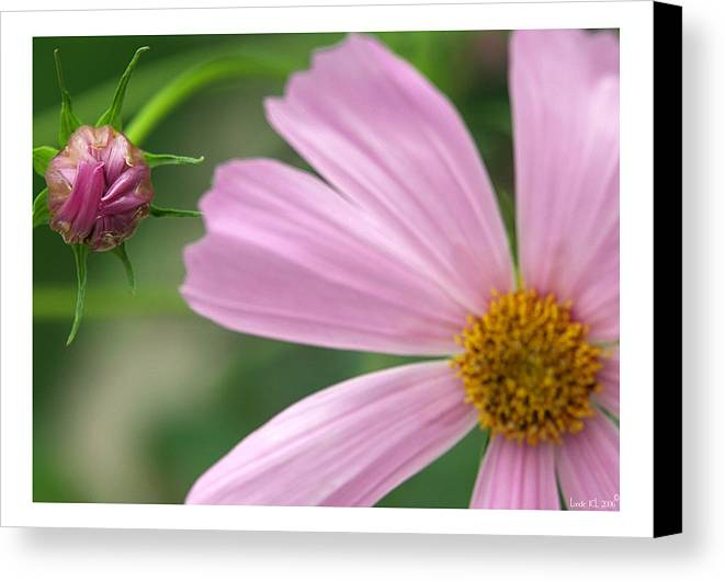 Floral Canvas Print featuring the photograph Think Big by Londie Benson