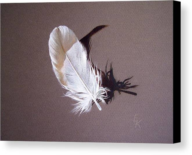 Still Life Canvas Print featuring the drawing Feather And Shadow 1 by Elena Kolotusha