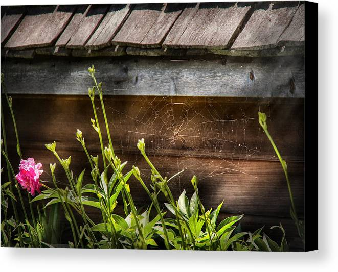 Suburbanscenes Canvas Print featuring the photograph Insect - Spider - Charlottes Web by Mike Savad