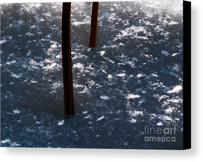 Snow Flakes Canvas Print featuring the photograph Snow Flakes by Scott Heister
