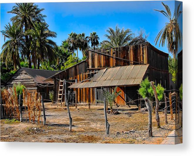 Baja California Canvas Print featuring the photograph Loreto Barn by Scott Massey