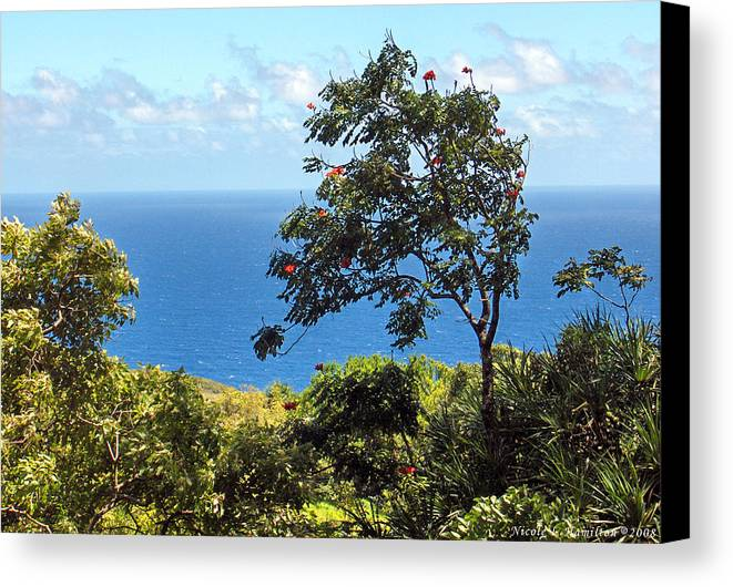 Landscape Canvas Print featuring the photograph Island Breeze by Nicole I Hamilton