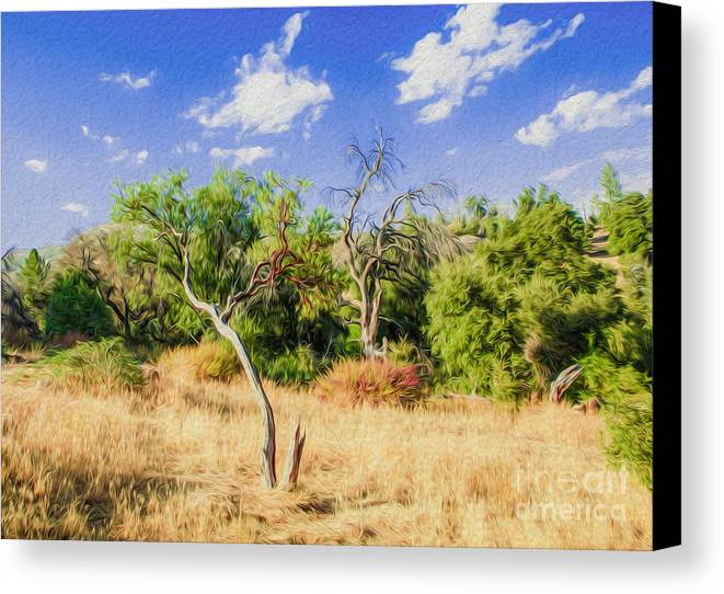 Outdoors Canvas Print featuring the digital art A Place Of Serenity 3 by Kenneth Montgomery