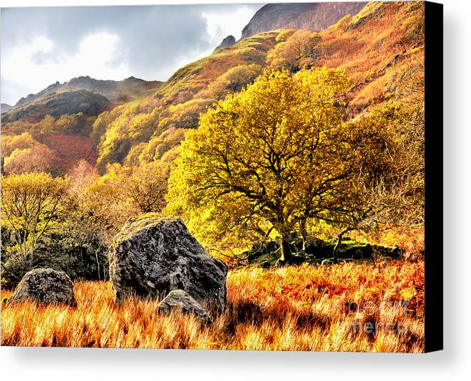 Fall Canvas Print featuring the photograph Above The 10 Mile Walk by Graeme Pettit