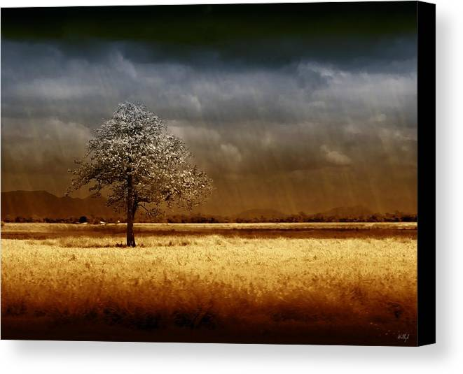 Landscapes Canvas Print featuring the photograph And The Rains Came by Holly Kempe