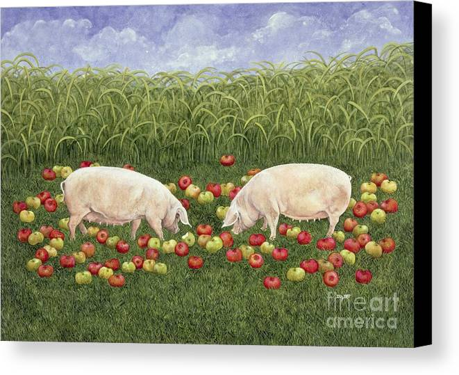 Apple-sows Apple; Sows; Sow; Pig; Pigs; Foraging; Apples; Cornfield; Rural; Sow Canvas Print featuring the painting Apple Sows by Ditz