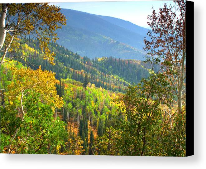 Colorful Colorado Turning Aspens Mountain Landscape Scene Canvas Print featuring the photograph Colorful Colorado by Brian Harig