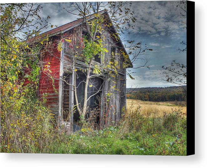 Shed Canvas Print featuring the digital art Extra Storage by Sharon Batdorf