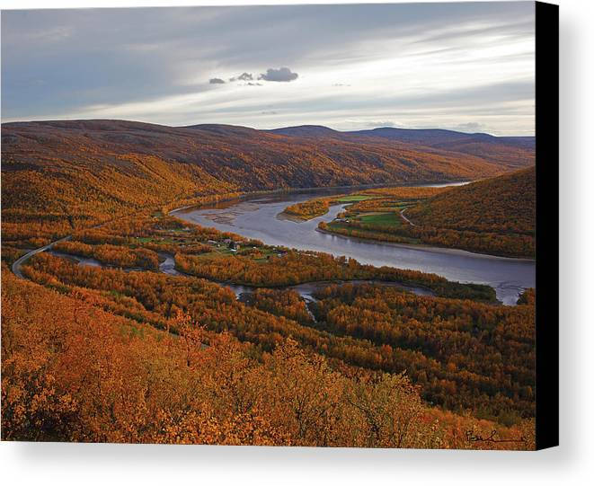 Arctic Canvas Print featuring the photograph Fall Colors In The Arctic by Pekka Sammallahti
