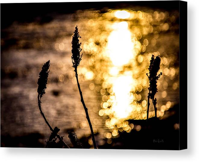 Winter Canvas Print featuring the photograph First Day by Bob Orsillo