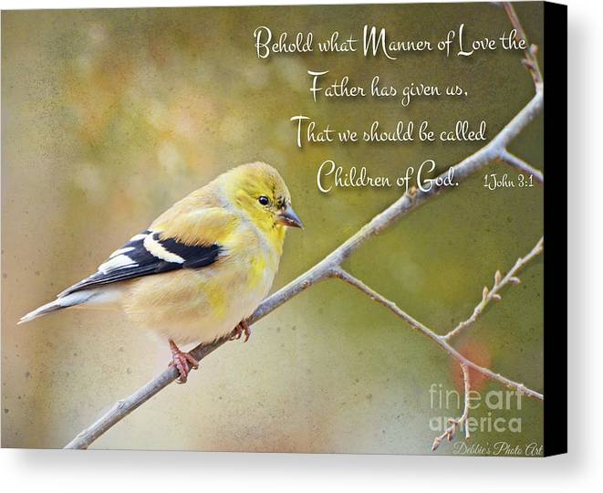 Finch Canvas Print featuring the photograph Gold Finch On Twig With Verse by Debbie Portwood