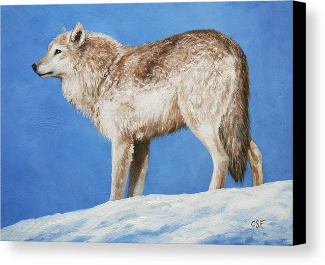 Wolf Canvas Print featuring the painting Snowy Wolf by Crista Forest