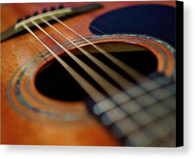 Guitar Canvas Print featuring the photograph The Strings Of Life by Charis Wilson