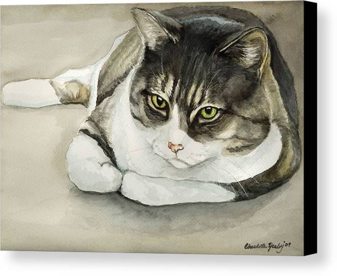 Cat Canvas Print featuring the painting Tubby by Charlotte Yealey