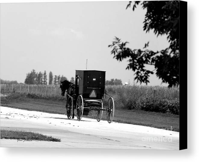 Horse & Buggy Canvas Print featuring the photograph Horse And Buggy On The Road by Yumi Johnson