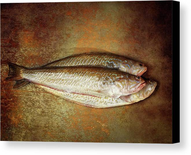 Horizontal Canvas Print featuring the photograph Fishes by Graigue.com