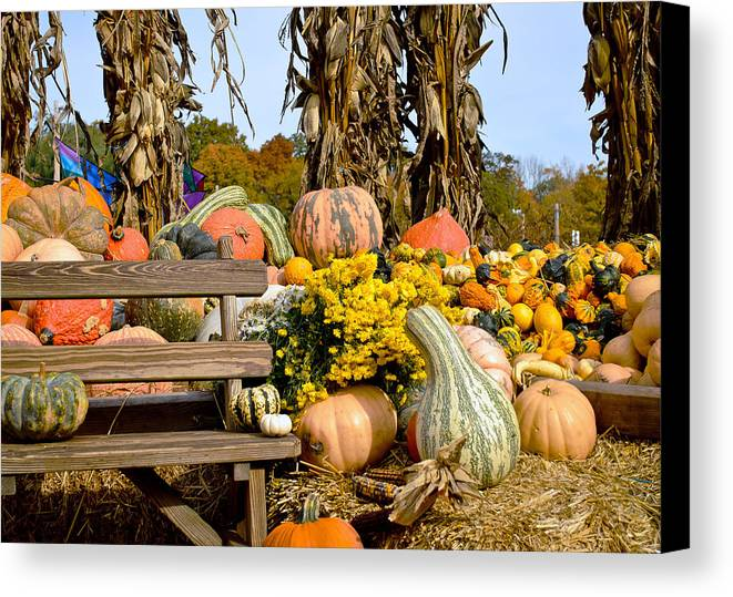 Autumn Canvas Print featuring the photograph Gords Galore by Laura DAddona