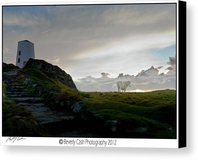 Lighthouse Canvas Print featuring the photograph Lighthouse And Horse by Beverly Cash