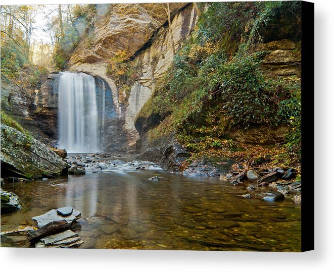 Waterfall Canvas Print featuring the photograph Looking Glass Falls by Francis Trudeau
