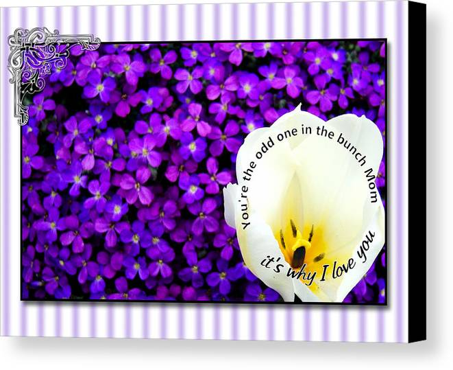 Greeting Card Canvas Print featuring the digital art Moms Day Humor Card by Susan Kinney