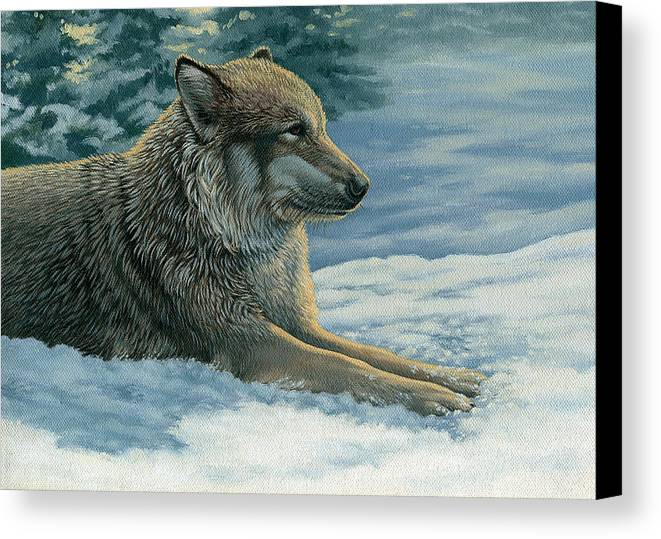 Wolf Canvas Print featuring the painting Resting Wolf by Lisa Bonforte
