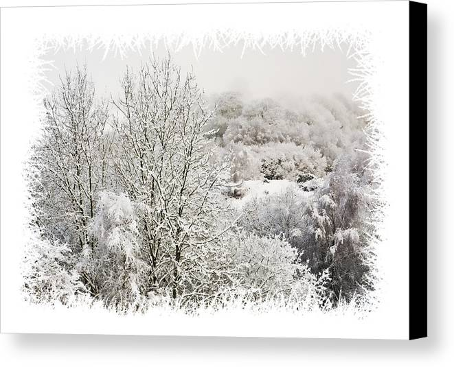 Snow Canvas Print featuring the photograph Snow Scene 1 by Steve Purnell