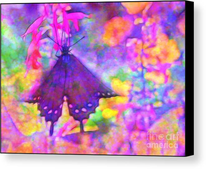 Swallowtail Canvas Print featuring the photograph Swallowtail by Judi Bagwell