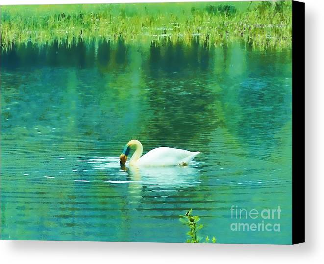 Swan Canvas Print featuring the photograph Swan Lake by Judi Bagwell
