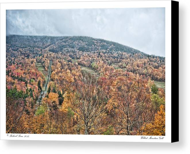 Wildcat Canvas Print featuring the photograph Wildcat Mountain Gold by Richard Bean