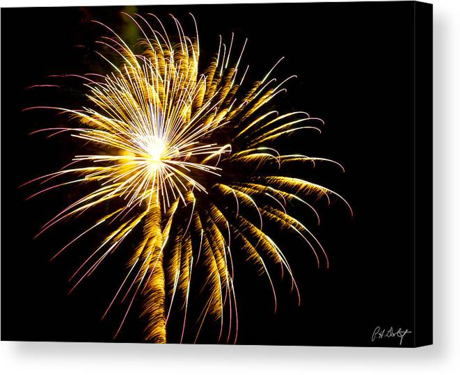 July 4th Canvas Print featuring the photograph Almost A Tree by Phill Doherty