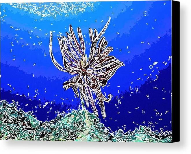 Starfish Canvas Print featuring the painting Beautiful Marine Plants 1 by Lanjee Chee