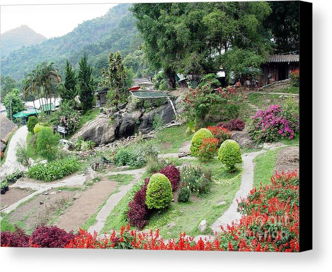 Burma Canvas Print featuring the photograph Burma Village Garden And Pond by John Johnson