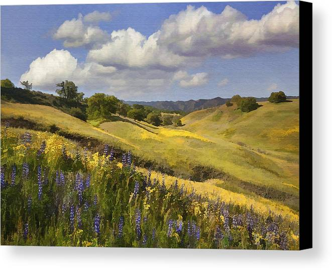 Lupine Canvas Print featuring the digital art Cottonwood Canyon by Sharon Foster