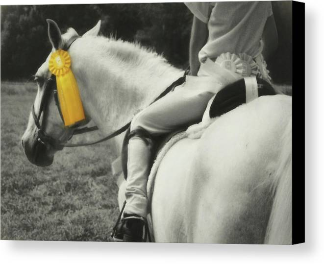 Horse Canvas Print featuring the photograph First Show Yellow by JAMART Photography
