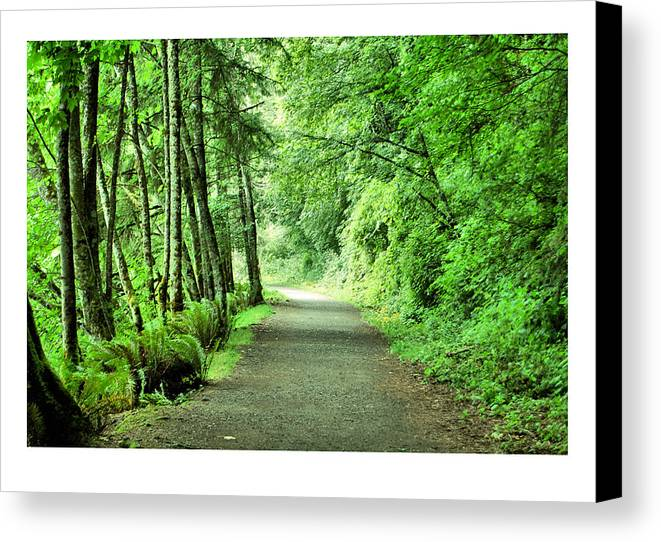 Green Canvas Print featuring the photograph Green Path by J D Banks