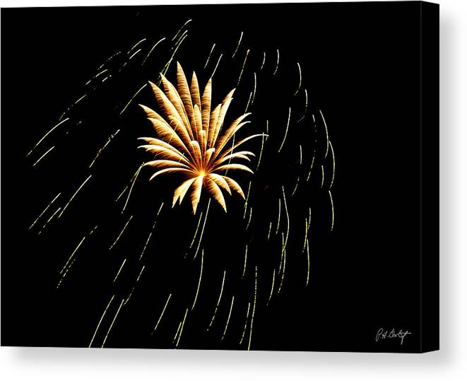 July 4th Canvas Print featuring the photograph Green Streaks by Phill Doherty